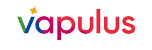 Top Fintech Startup Egypt - vapulus