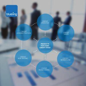 Bluering, Linkedin.com