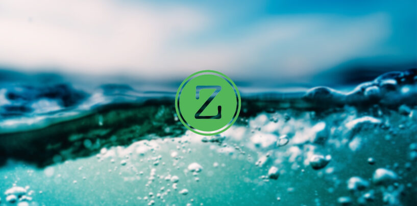 NETZ Coin Offers Unique and Sustainable Long-Term Value to Holders