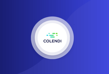 Turkish Microlender Colendi Raises US$30M